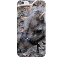 Wot! No Red Nose! iPhone Case/Skin
