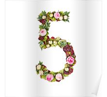 The number Five Part of a set of letters, Numbers and symbols Poster