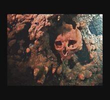 Skull by Maree Toogood
