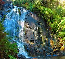 Stephenson Falls- Marysville , Yarra Ranges National Park Victoria Australia by Philip Johnson