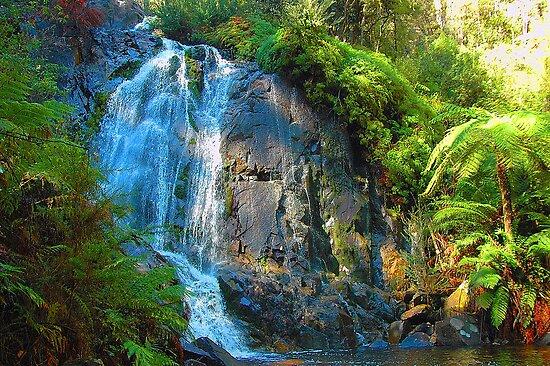 Marysville Australia  City pictures : Falls Marysville , Yarra Ranges National Park Victoria Australia ...