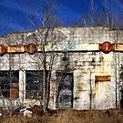 The Garage by Lisa G. Putman