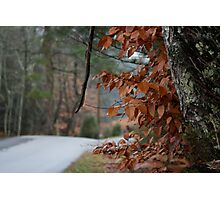 Mountain Road. Photographic Print