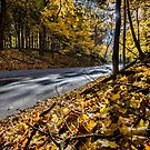 Country road with fall colors by Sven Brogren