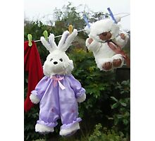 Clean rabbit on the line Photographic Print