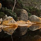 0650 Tidal River Reflections by DavidsArt