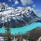 Peyto Lake by John Poon