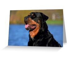 Milo by the lake Greeting Card
