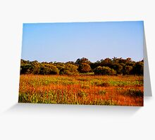 Bushland Greeting Card