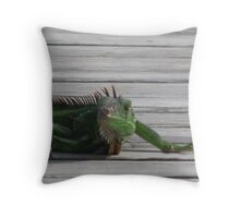 relaxing on the dock Throw Pillow