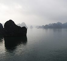 Ha Long Bay, Vietnam by LindaLou1952