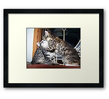 kitty secrets Framed Print