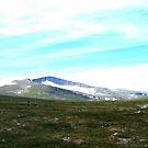 Holy Mountain by HELUA