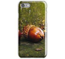 Squirrel Food iPhone Case/Skin