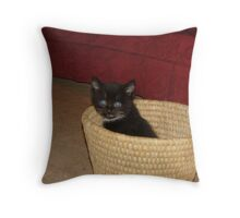 kitty in a basket Throw Pillow