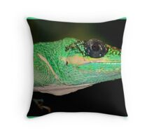 Hey, I see you Throw Pillow