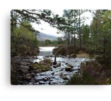 Stream running out of Loch an Eilean Canvas Print