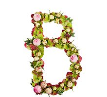 Capital Letter B Part of a set of letters, Numbers and symbols  by PhotoStock-Isra