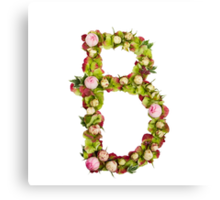 Capital Letter B Part of a set of letters, Numbers and symbols  Canvas Print