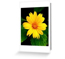 Bright & Sunny Greeting Card