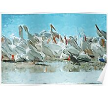 White Pelicans and Black Cormorant Abstract Impressionism Poster