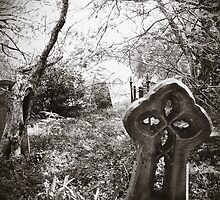 Newtown Cemetery by Ross Robinson