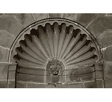 Lions Fountain Photographic Print