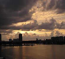 A View of St. Petersburg, FL by Donna Liza
