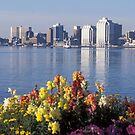 Halifax Nova Scotia by Glenn Esau
