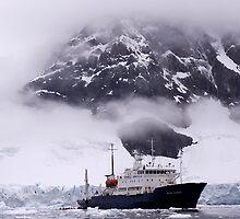 Polar Pioneer by Interstellar Images