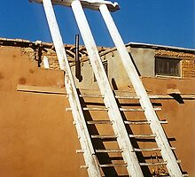 Ladder in the desert by sasjacobs