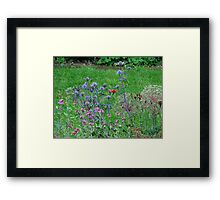Pretty as a picture 2 Framed Print