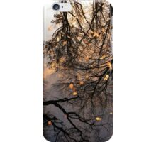 Sky Reflections iPhone Case/Skin
