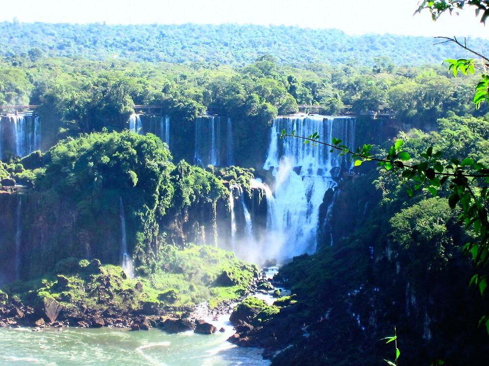 Iguazu by VirgiMax Designs