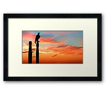 Perched Eagle at Sunset Framed Print