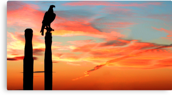 Perched Eagle at Sunset by Jared Revell
