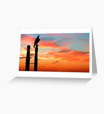 Perched Eagle at Sunset Greeting Card