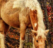 Buckskin Horse in Autumn Sticker