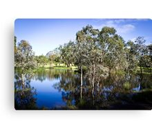Trees reflected at Dunkeld Community Park, Victoria Canvas Print