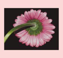Pink Gerbera daisy Kids Clothes