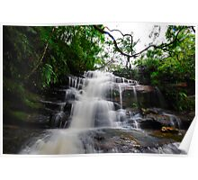 Waterfall from Somersby Falls 18 Poster
