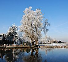 Living at the Vecht by fuz1on
