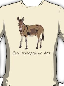 This is not a donkey T-Shirt