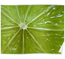 Lime sunburst Poster