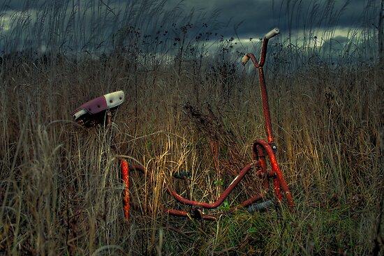 Forgotten Childhood... by Kevin  Kroeker