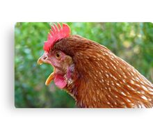 I Laid an EGG! - Red Hen - NZ - Southland Canvas Print
