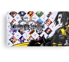 Terra - Kingdom Hearts 2.5 Metal Print