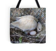 Perfect Beginning - Mother & Child - African Collared Dove - NZ Tote Bag