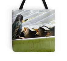 Don't Talk With Your Mouth Full! - Starlings Chicks - NZ Tote Bag
