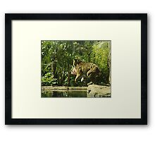 Coiled muscles. Framed Print